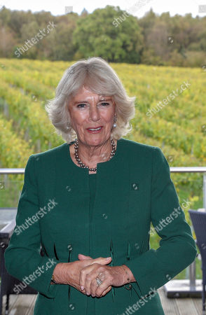 Camilla Duchess of Cornwall, President of Wine GB, during a visit to the new winery at Bolney Wine Estate in Haywards Heath, Sussex.