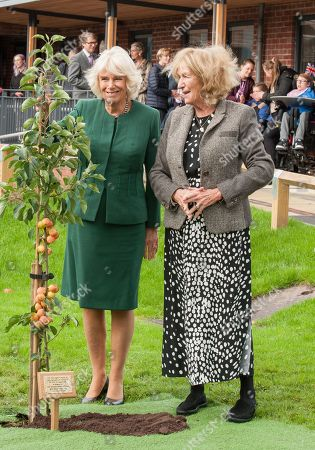 Editorial picture of Camilla Duchess of Cornwall visit to Sussex, UK - 17 Oct 2019