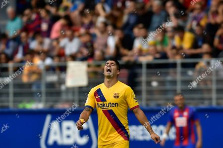 Barcelona's Luis Suarez reacts after scoring a goal that was disallowed during a Spanish La Liga soccer match between Eibar and FC Barcelona at the Ipurua stadium in Eibar, Spain