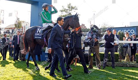 KING OF CHANGE (Sean Levey) after The Queen Elizabeth II Stakes Ascot