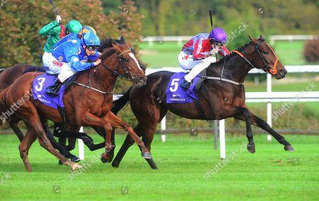 Stock Photo of Leopardstown STELA STAR & COlin Keane (purple cap) win the Group 3 Killavullan Stakes from IBERIA & CAMACHITA