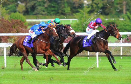Editorial image of Horse Racing - 19 Oct 2019