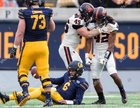 Oregon State defensive lineman Simon Sandberg (45) and teammate Doug Taumoelau (42) react after sacking California quarterback Devon Modster (6) in the second quarter of an NCAA college football game in Berkeley, Calif