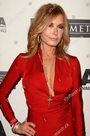 Stock Picture of Tracey E. Bregman