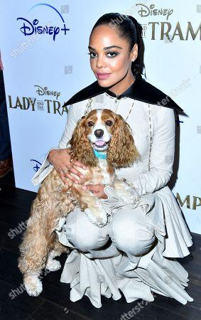 Tessa Thompson and dog