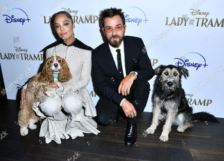 Tessa Thompson, Justin Theroux and dogs