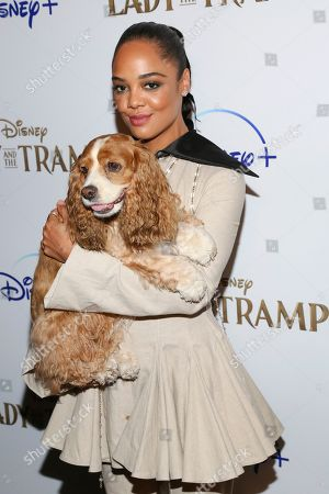 """Tessa Thompson attends a special screening of """"Lady and the Tramp,"""" hosted by Disney+ and The Cinema Society, at iPic Theater, in New York"""