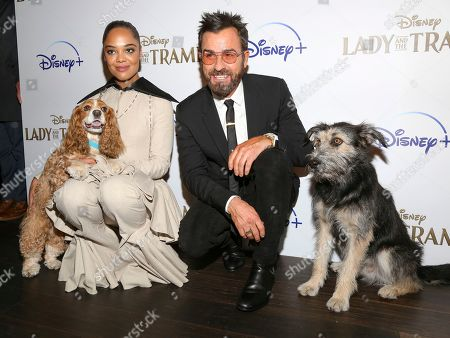 """Tessa Thompson, Justin Theroux. Tessa Thompson, left, and Justin Theroux, attend a special screening of """"Lady and the Tramp,"""" hosted by Disney+ and The Cinema Society, at iPic Theater, in New York"""