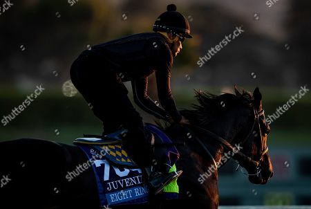 , 2019, Arcadia, California, USA: OCT 25: Breeders' Cup Juvenile entrant Eight Rings, trained by Bob Baffert, gallops with Humberto Gomez up, at Santa Anita Park in Arcadia, California on Evers/Eclipse Sportswire/Breeders' Cup/CSM