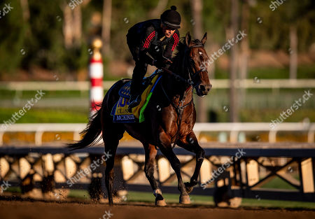 , 2019, Arcadia, California, USA: OCT 25: Breeders' Cup Classic entrant McKinzie, trained by Bob Baffert, gallops at Santa Anita Park in Arcadia, California on Evers/Eclipse Sportswire/Breeders' Cup/CSM