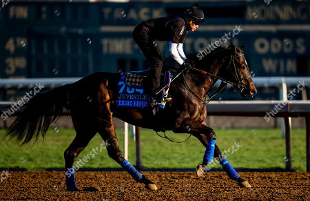 , 2019, Arcadia, California, USA: OCT 24: Breeders' Cup Juvenile entrant Eight Rings, trained by Bob Baffert, gallops with Humberto Gomez at Santa Anita Park in Arcadia, California on Evers/Eclipse Sportswire/Breeders' Cup/CSM
