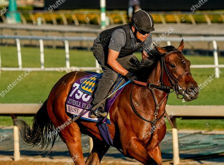 , 2019, Arcadia, California, USA: Breeders' Cup Juvenile Fillies entrant Bast, trained by Bob Baffert, exercises in preparation for the Breeders' Cup World Championships at Santa Anita Park in Arcadia, California on October 26, 2019. Scott Serio/Eclipse Sportswire/BreedersÃ? Cup/CSM