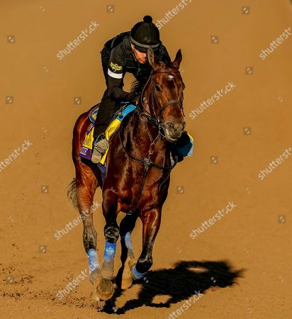 , 2019, Arcadia, California, USA: Breeders' Cup Classic entrant McKinzie, trained by Bob Baffert, exercises in preparation for the Breeders' Cup World Championships at Santa Anita Park in Arcadia, California on October 26, 2019. Scott Serio/Eclipse Sportswire/BreedersÃ? Cup/CSM
