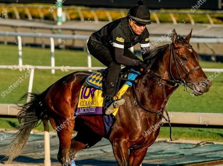 Stock Picture of , 2019, Arcadia, California, USA: Breeders' Cup Classic entrant McKinzie, trained by Bob Baffert, exercises in preparation for the Breeders' Cup World Championships at Santa Anita Park in Arcadia, California on October 26, 2019. Scott Serio/Eclipse Sportswire/BreedersÃ? Cup/CSM