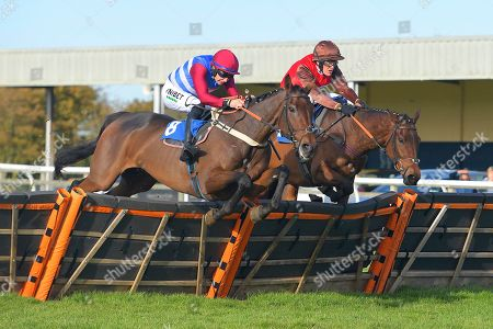 Winner of The John Romans Park Homes Combat Stress Novices' Hurdle, Dolphin Square (far side) ridden by David Maxwell and trained by Philip Hobbs during Horse Racing at Wincanton Racecourse on 27th October 2019