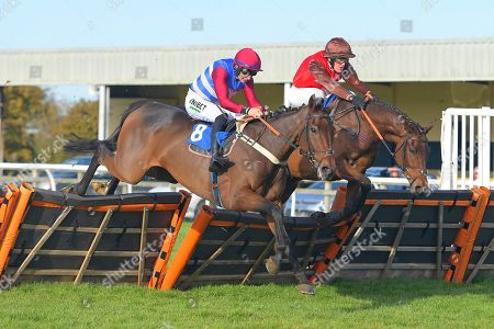 Winner of The John Romans Park Homes Combat Stress Novices' Hurdle, Dolphin Square (far side) ridden by David Maxwell and trained by Philip Hobbs clear the last during Horse Racing at Wincanton Racecourse on 27th October 2019