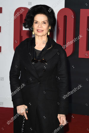 Stock Picture of Bianca Jagger