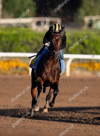 , 2019, Arcadia, California, USA: OCT 28: Breeders' Cup Classic entrant McKinzie, trained by Bob Baffert, works at Santa Anita Park in Arcadia, California on Evers/Eclipse Sportswire/Breeders' Cup/CSM