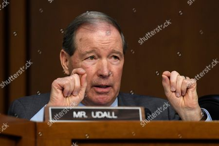 """Stock Photo of Sen. Tom Udall, D-N.M., asks a question of Boeing Company President and Chief Executive Officer Dennis Muilenburg on Capitol Hill in Washington, during a Senate Transportation Committee hearing on """"Aviation Safety and the Future of Boeing's 737 MAX"""