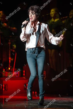 Stock Picture of Lisa Stansfield