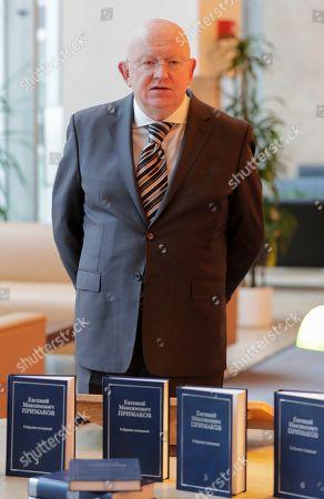 Stock Image of Vasily Nebenzya