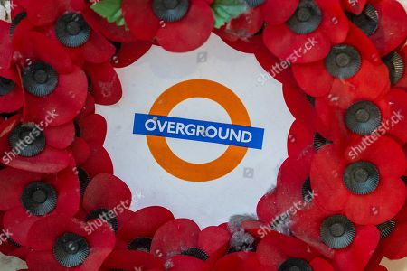 Editorial picture of Poppy Day launch, London, UK - 31 Oct 2019
