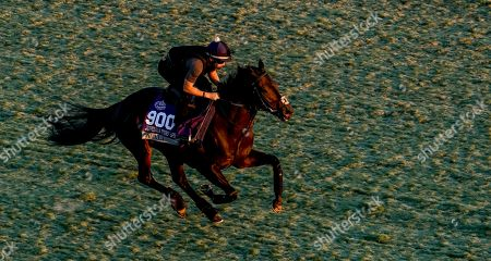 Editorial image of Horse Racing Breeders? Cup Preparations, Arcadia, USA - 31 Oct 2019