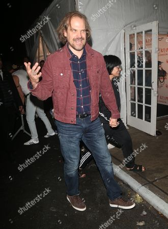 Stock Image of David Harbour and Lily Allen