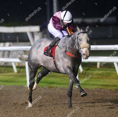 Editorial photo of Horse Racing - 01 Nov 2019