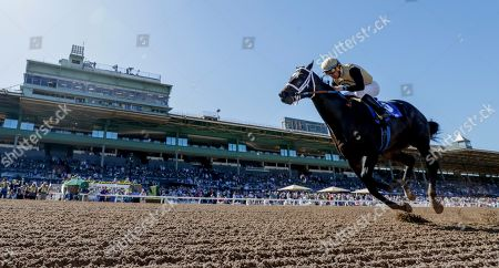 , 2019, Arcadia, California, USA: Tap Back, ridden by Victor Espinoza, wins the Golden State Juvenile on Breeders' Cup World Championship Friday at Santa Anita Park on November 1, in Arcadia, California. Alex Evers/Eclipse Sportswire/CSM