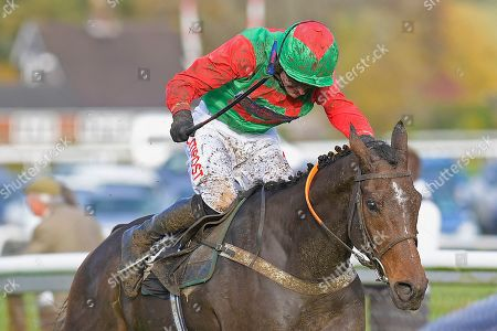Stock Picture of Winner of The Revived Inns Novices' Handicap Chase Crossley Tender ridden by Nick Scholfield and trained by Paul Henderson during Horse Racing at Plumpton Racecourse on 4th November 2019