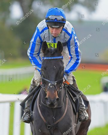 TheoÕs Charm ridden by Leighton Aspell and trained by Nick Gifford during Horse Racing at Plumpton Racecourse on 4th November 2019
