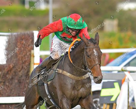 Stock Image of Winner of The Revived Inns Novices' Handicap Chase Crossley Tender ridden by Nick Scholfield and trained by Paul Henderson during Horse Racing at Plumpton Racecourse on 4th November 2019