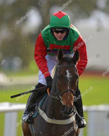 Editorial photo of Jump Season Preview Raceday, Horse Racing, Plumpton Racecourse, East Sussex, United Kingdom - 04 Nov 2019