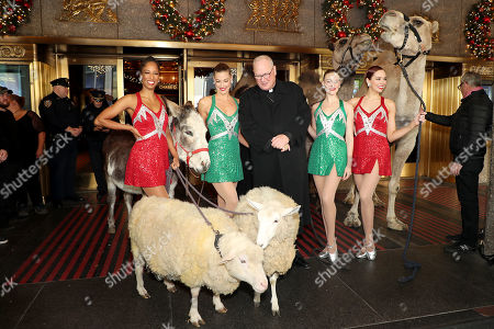 Editorial picture of Cardinal Dolan And The Radio City Rockettes as The Camels, Sheep & Donkey Arrive For Their First Day Of Rehearsals For Their Starring Role In The 2019 Christmas Spectacular Starring the Radio City Rockettes Presented By Chase - 04 Nov 2019