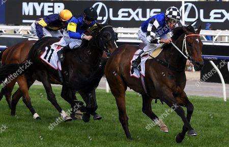 Jockey Damien Oliver rides Tactical Advantage to victory in race nine, the MSS Security Sprint, during Melbourne Cup Day at Flemington Racecourse in Melbourne, Australia, 05 November 2019.