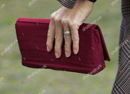 Queen Maxima, clutch detail