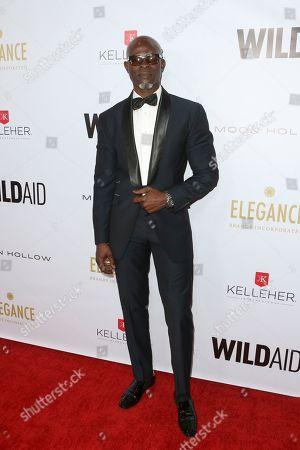 Stock Picture of Djimon Hounsou