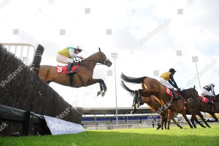 Sammy Bill and Leighton Aspell sail over a fence on the way to victory in the racingtv.com Novices' Handicap Chase at Kempton.