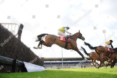 Editorial image of Horse Racing - 11 Nov 2019