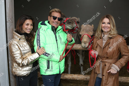 Stock Picture of Dieter Bohlen, Carina Walz, Frauke Ludowig with camel