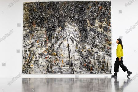 A staff member views 'String-Theorie', 2018-2019, by Anselm Kiefer