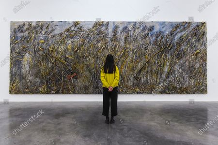 A staff member views 'Right Wing, Left Wing', 2019, by Anselm Kiefer