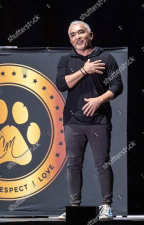 Stock Photo of Mexican-American dog trainer and television personality Cesar Millan performs during his show in Papp Laszlo Budapest Sports Arena in Budapest, Hungary, 14 November 2019.