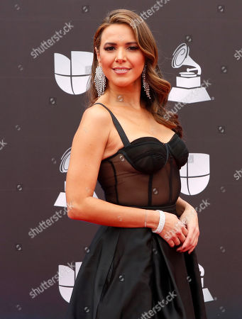 Stock Picture of Stephanie Bradford arrives for the 20th annual Latin Grammy Awards ceremony at the MGM Grand Garden Arena in Las Vegas, Nevada, USA, 14 November 2019. The Latin Grammys recognize artistic and/or technical achievement, not sales figures or chart positions, and the winners are determined by the votes of their peers - the qualified voting members of the Latin Recording Academy.