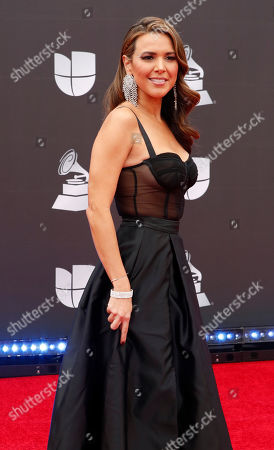 Stock Image of Stephanie Bradford arrives for the 20th annual Latin Grammy Awards ceremony at the MGM Grand Garden Arena in Las Vegas, Nevada, USA, 14 November 2019. The Latin Grammys recognize artistic and/or technical achievement, not sales figures or chart positions, and the winners are determined by the votes of their peers - the qualified voting members of the Latin Recording Academy.
