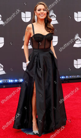 Stock Photo of Stephanie Bradford arrives for the 20th annual Latin Grammy Awards ceremony at the MGM Grand Garden Arena in Las Vegas, Nevada, USA, 14 November 2019. The Latin Grammys recognize artistic and/or technical achievement, not sales figures or chart positions, and the winners are determined by the votes of their peers - the qualified voting members of the Latin Recording Academy.