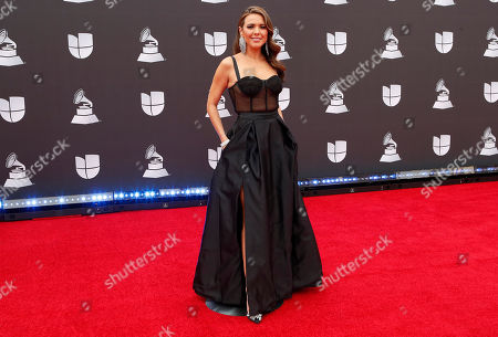 Stephanie Bradford arrives for the 20th annual Latin Grammy Awards ceremony at the MGM Grand Garden Arena in Las Vegas, Nevada, USA, 14 November 2019. The Latin Grammys recognize artistic and/or technical achievement, not sales figures or chart positions, and the winners are determined by the votes of their peers - the qualified voting members of the Latin Recording Academy.