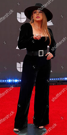 Stock Image of Olga Tanon arrives for the 20th annual Latin Grammy Awards ceremony at the MGM Grand Garden Arena in Las Vegas, Nevada, USA, 14 November 2019. The Latin Grammys recognize artistic and/or technical achievement, not sales figures or chart positions, and the winners are determined by the votes of their peers - the qualified voting members of the Latin Recording Academy.