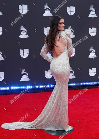 Dayanara Torres arrives for the 20th annual Latin Grammy Awards ceremony at the MGM Grand Garden Arena in Las Vegas, Nevada, USA, 14 November 2019. The Latin Grammys recognize artistic and/or technical achievement, not sales figures or chart positions, and the winners are determined by the votes of their peers - the qualified voting members of the Latin Recording Academy.